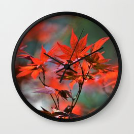 Scarlet Japanese Maple Leaves Wall Clock