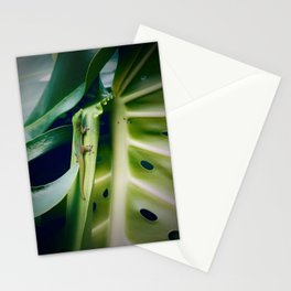 Just Hangin' Out Stationery Cards