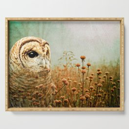 Barred Owl in Foggy Forest Serving Tray