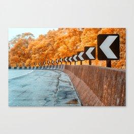 Highway Curve Canvas Print
