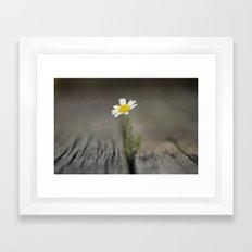 simply daisy Framed Art Print