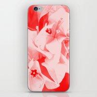 ali gulec iPhone & iPod Skins featuring Ali by Keren Shiker