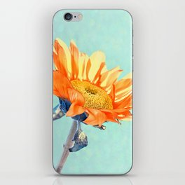 Sunflower Daze iPhone Skin