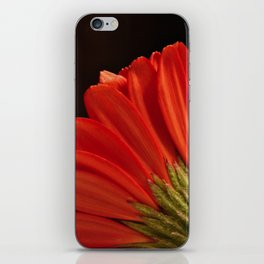 Graceful Unveiling iPhone Skin