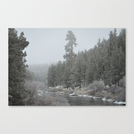 Old Ponderosa On The Deschutes River Canvas Print