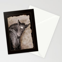 Black Foal Scratching  Stationery Cards