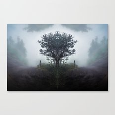 Kaleidoscape: Pacaya Canvas Print