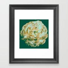 Floral Flower Art - Retro Rose Black and Pink Vintage Flowers Framed Art Print