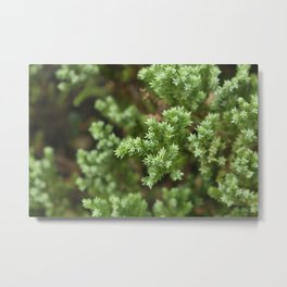 Anything goes with green. Metal Print