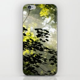 Forest Morning iPhone Skin