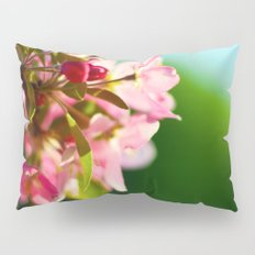 Pink Flowers Blue sky Pillow Sham