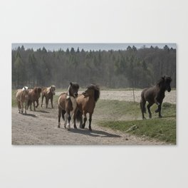 Are you hungry as well? Canvas Print