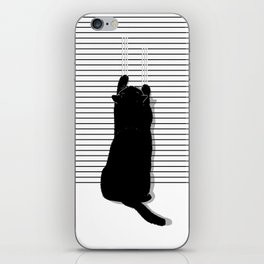 Cat Scratch iPhone Skin