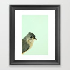 Natural History Bird Photograph - Tufted Titmouse Framed Art Print