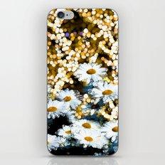 Dynamite Daisies iPhone & iPod Skin