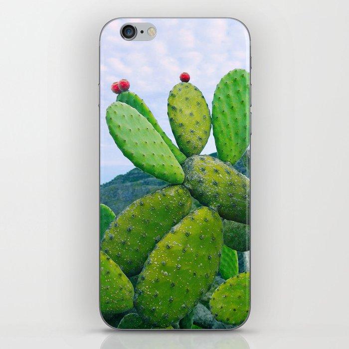 Blooming cacti iPhone Skin