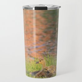 Canadian Goose and Goslings by Reay of Light Travel Mug
