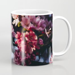 Photo of Cherry Blossom Flowers in Golden Hour in Amsterdam, the Netherlands | Fine Art Colorful Travel Photography | Coffee Mug