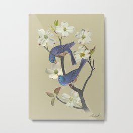 Bluebirds in Dogwood Tree Metal Print