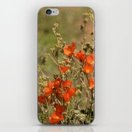 Desert Wildflower - 4 iPhone Skin