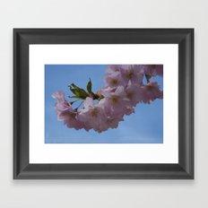 look up and see pink Framed Art Print