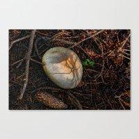 mushroom Canvas Prints featuring Mushroom by Christia Caldwell Moody