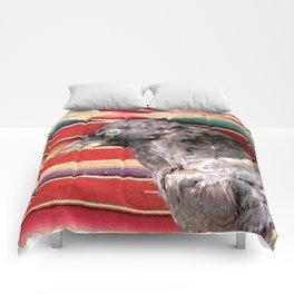 Old crow Comforters