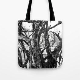 fallen tree roots Tote Bag