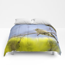 Spring time Bird, Nature Photography, Spring, Wall Art, Wall Hanging Comforters