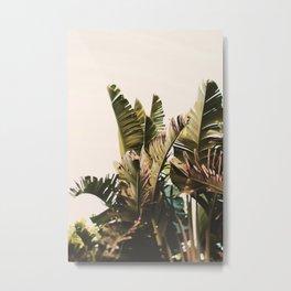 Equatorial Metal Print
