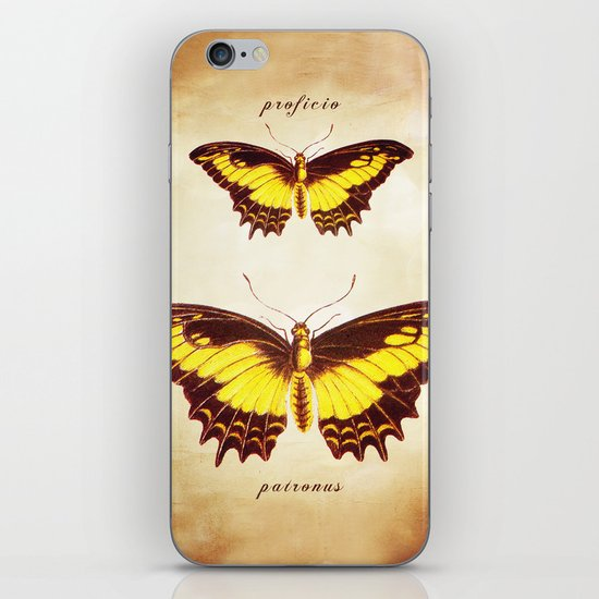 I will Show You The Way iPhone & iPod Skin