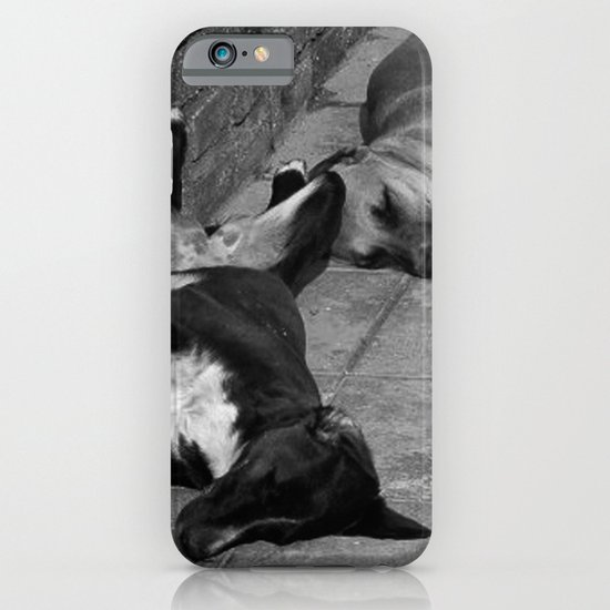Greek Dogs iPhone & iPod Case