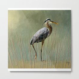 Great Blue At The Beach Metal Print