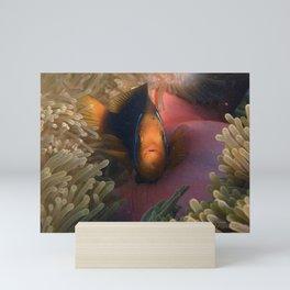 Nemo Mini Art Print