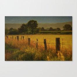 Landscape whit field Canvas Print