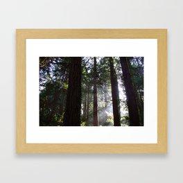 Golden Gate Park Framed Art Print
