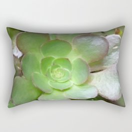 Succulent Plant Rectangular Pillow