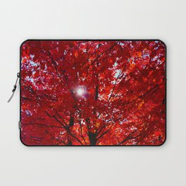 Sun Through Maple Leaves Laptop Sleeve
