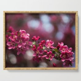 Pink Apple Blossoms Serving Tray