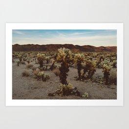 Cholla Cactus Garden XII Art Print