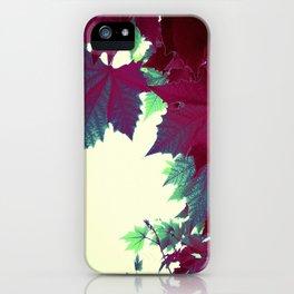 Under the burgundy Maple Tree iPhone Case
