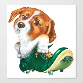 A little dog in a spike Canvas Print