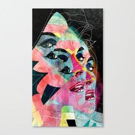 251113 Canvas Print