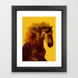 Proud Stallion Framed Art Print