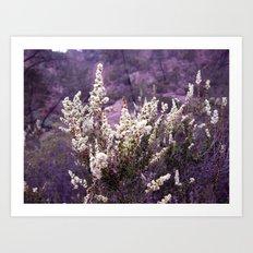 Pinnacles in Purple Art Print