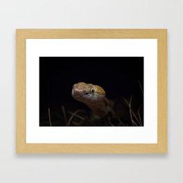 Copperhead Snake Framed Art Print