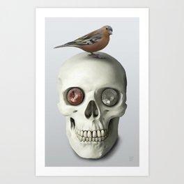Skull & bird, watercolor Art Print