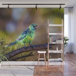 Mallee Ringneck Parrot Wall Mural