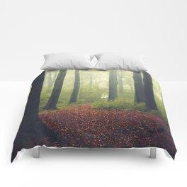 Soft Passage Comforters