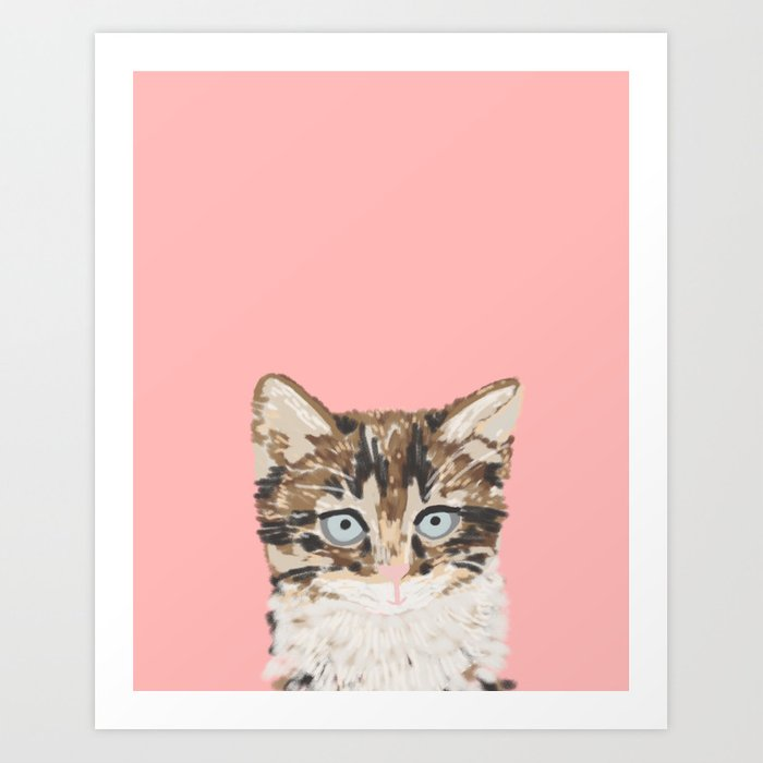 Kitten Cutest Pastel Gift For Valentines Day Cat Pet Friendly Furry
